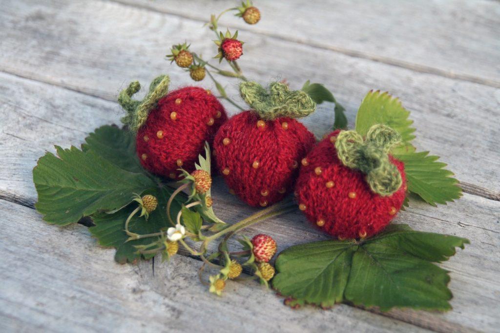 """caprice birker gestrickte Erdbeeren auf sockshype caprice birker Caprice Birker führt ein """"Delikatessengeschäft"""" für Strick und Handarbeitsfans"""
