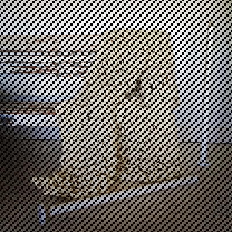 Little Dandelion: Extreme Knitting mit der K1S1