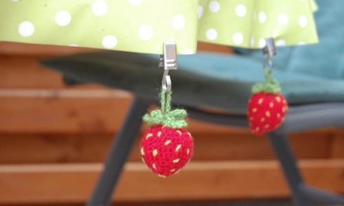 Erdbeere Blatt-10  Thema des Monats Juni 2015: Sommer im Garten