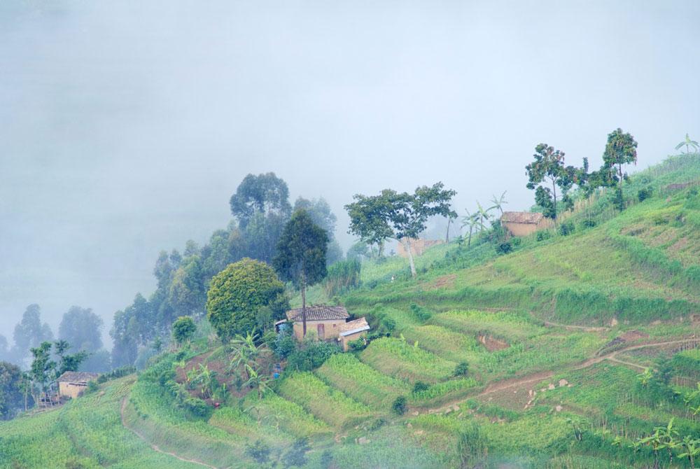 intombi - Ruanda Terrassenlandschaft