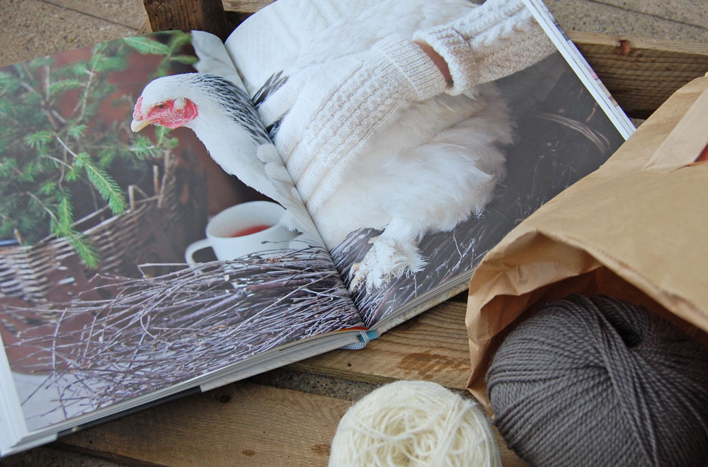 Wintertraum & Strickzauber - Handschuhe Huhn Buchbesprechung: Buch Wintertraum & Strickzauber von epipa