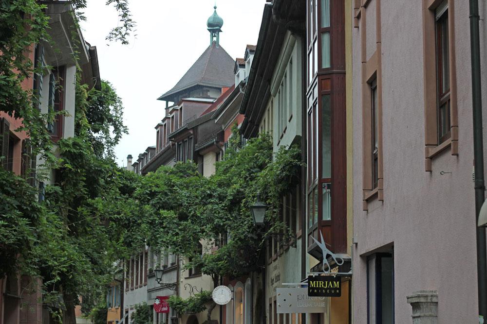 Tag der Wolle - Freiburg tag der wolle Tag der Wolle 2017 in Freiburg
