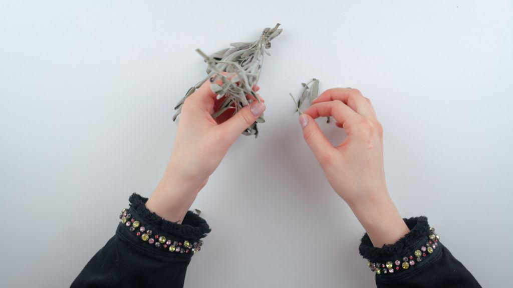 Teebeutel selber machen: Salbeiblätter trocknen & abzupfen teebeutel selber machen Teebeutel selber machen