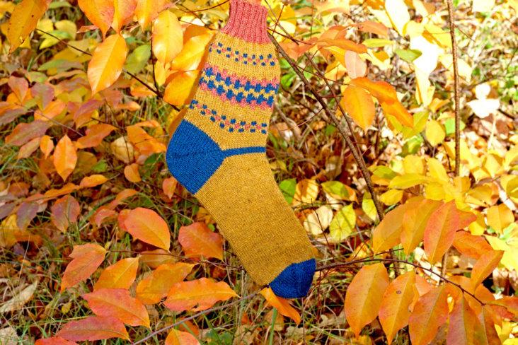 FinnSocks passen farblich wunderbar in den Herbst