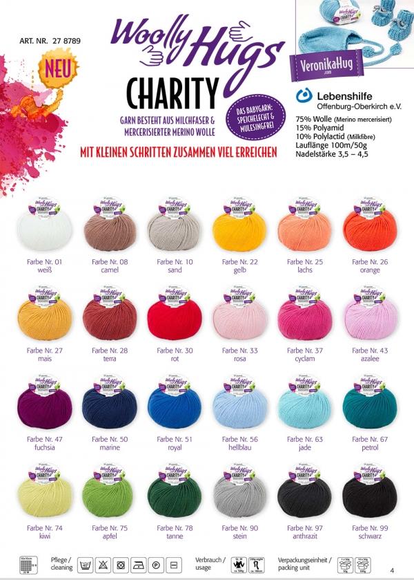 Flyer Charity