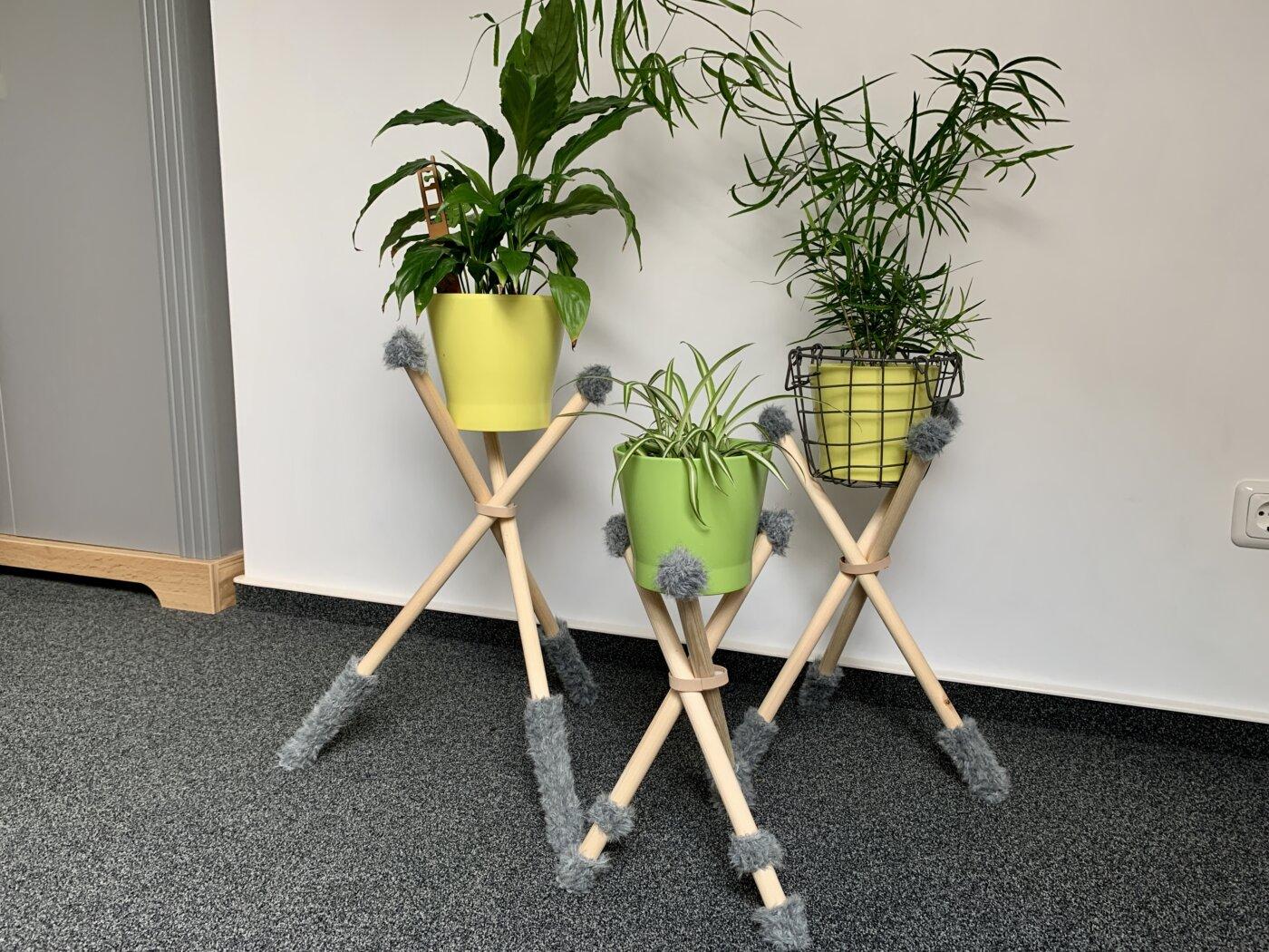Hier kommen die Pflanzen gut zur Geltung.