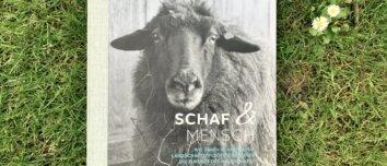 Schaf und Mensch - Titelbild des Buches